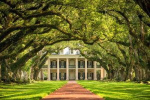 Close to home cruises - Oak Alley Plantation Mississippi Cruise