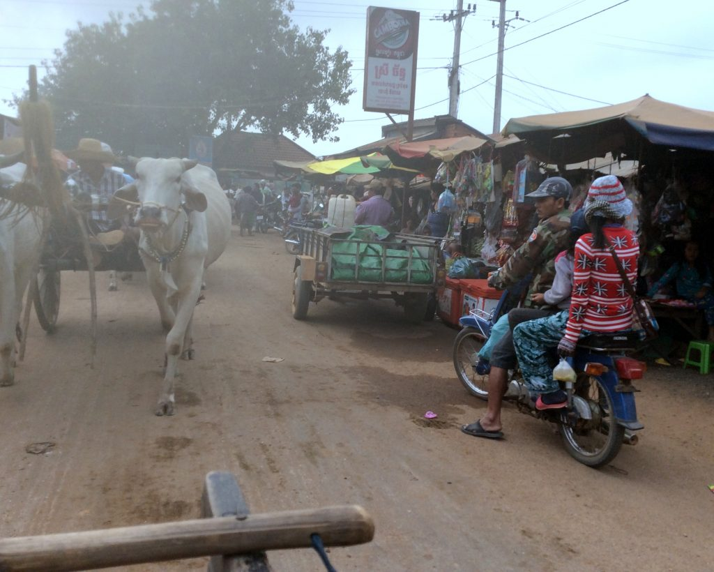 Typical Cambodian street scene during Avalon Siem Reap Mekong River Cruise