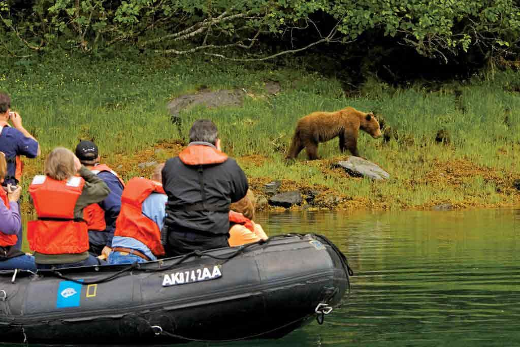 Brown Bear sighting during Lindblad's 5-night Alaska expedition