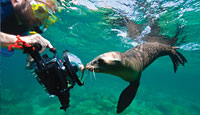 Galapagos Expedition 6 nts Lindlbad-National Geographic