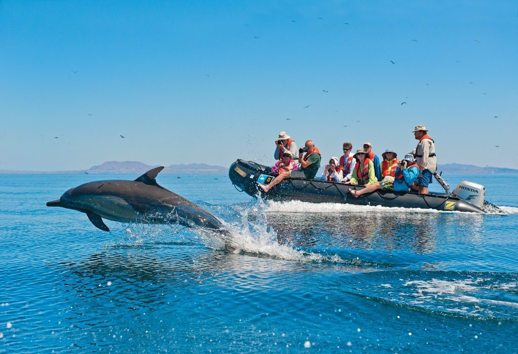 Lindblad-National Geographic Expedition in Baja
