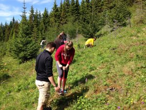 Crystal Cruises You Care We Care Program - Planting trees at the Heidmork Natural Reserve in Reykjavik, Iceland
